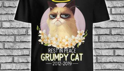 RIP rest in peace Grumpy cat 2012-2019 ladies