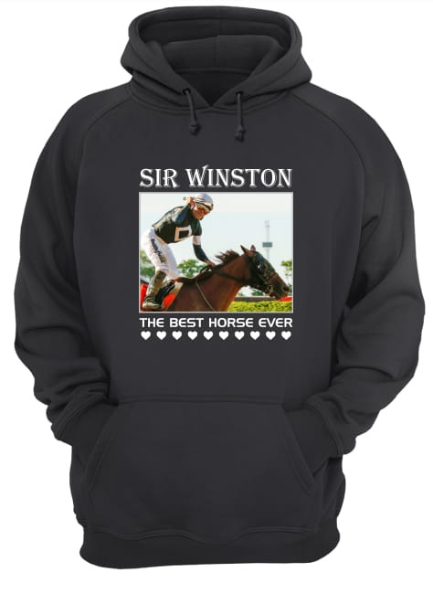 Sir Winston The Best Horse Ever Hoodie