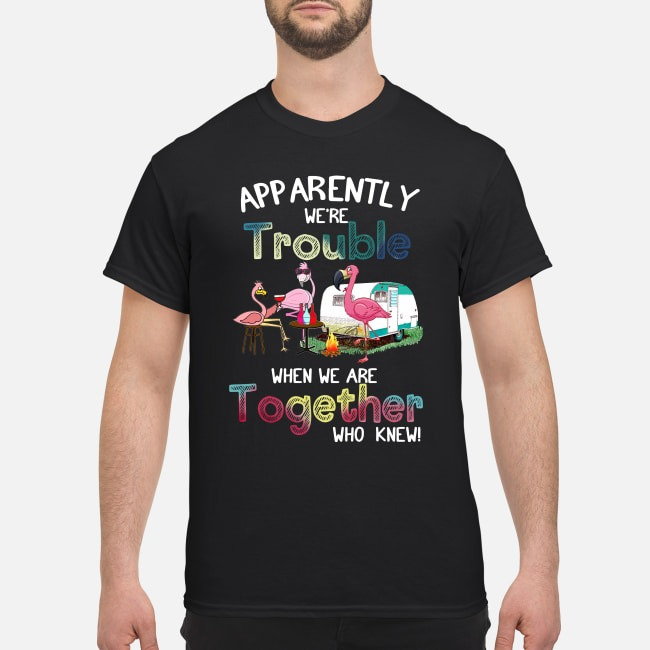 Flamingos Camping Apparently We're Trouble When We Are Together Who Knew Shirt